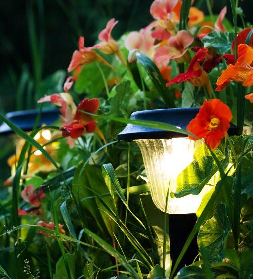 Oświetlenie ogrodowe, czyli jak wybrać lampy do ogrodu
