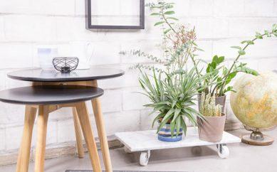 [Zrób to sam z DaWanda] Podstawka do kwiatów na kółkach – tutorial DIY